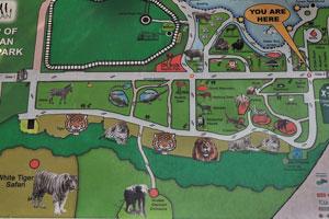 Макет карта зоологического парка Нанданканан