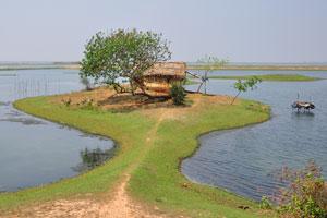 Дорожка на романтическом острове