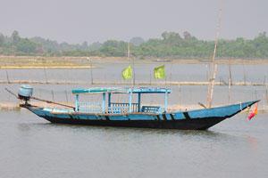На лодке возвышаются зелёные флаги