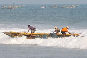 Рыбаки приплыли к берегу