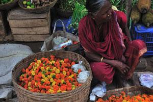Продажа цветов и цветной капусты