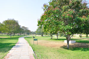 Не мусорите, помогите сохранять Джайпур чистым и зелёным