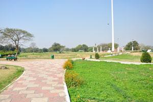 Дорожки парка выложены плиткой