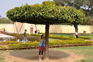 Индийская девушка позирует под деревом