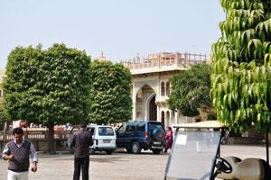Внутри Городского дворцового комплекса в Джайпуре есть деревья цилиндрической формы. Раджендра Пол