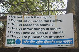 Не дразните животных