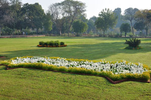 Цветочная клумба в саду Чарбагх